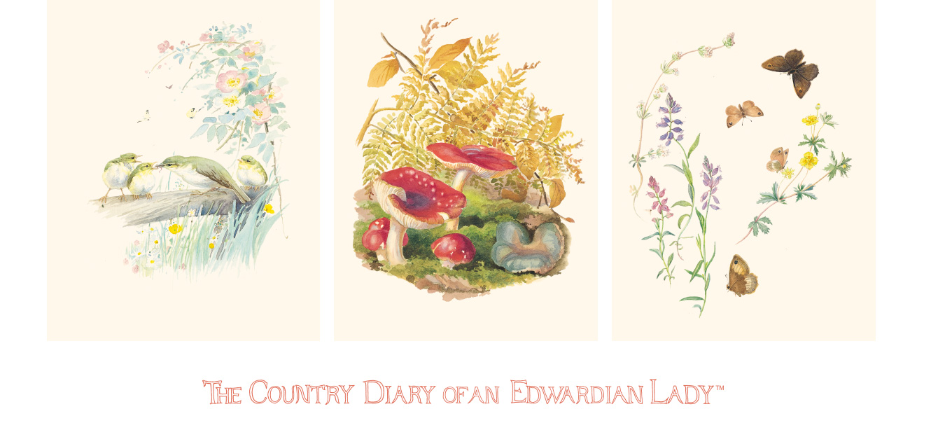 THE COUNTRY DIARY OF AN EDWARDIAN LADY™